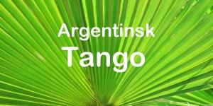 lysegrøn palme 1536x768 argentinsk tango