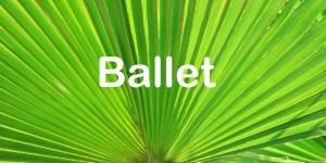 lysegrøn palme 1536x768 ballet